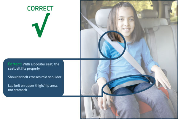 Use a Seatbelt and Wear it Right : BuckleUpNC.org ...